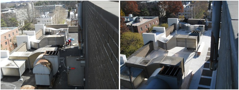roof audit consulting